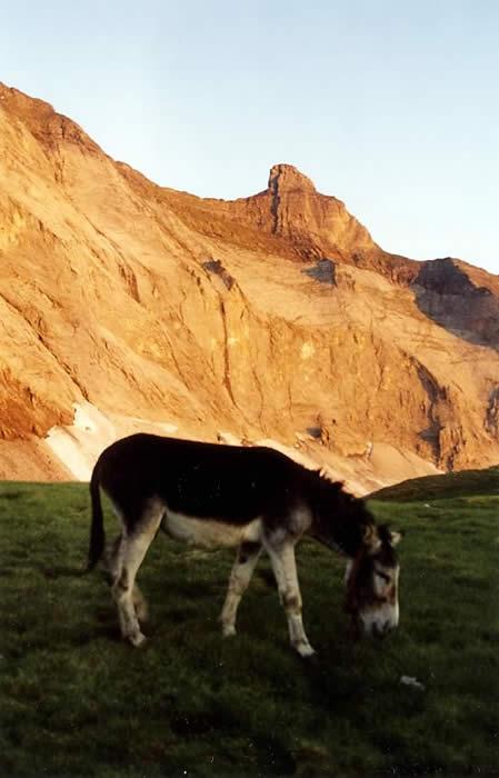 Pic de Gerbats au dessus d'un des lacs de Barroude. Eté 2001.