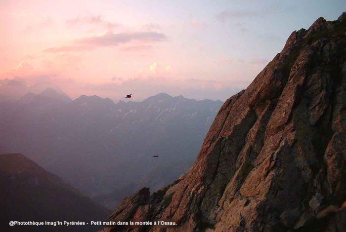 Pic du Midi d'Ossau à l'aube