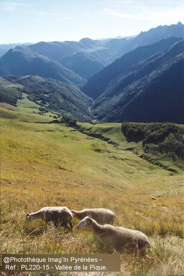 Vallée de la Pique depuis la montée au Céciré.
