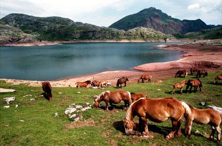 Randonnée : Lac d'Estaëns