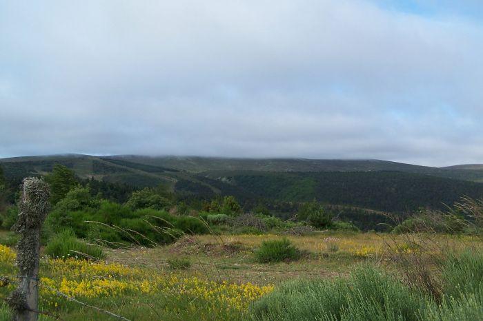 sommet du mont Lozere dans la brume