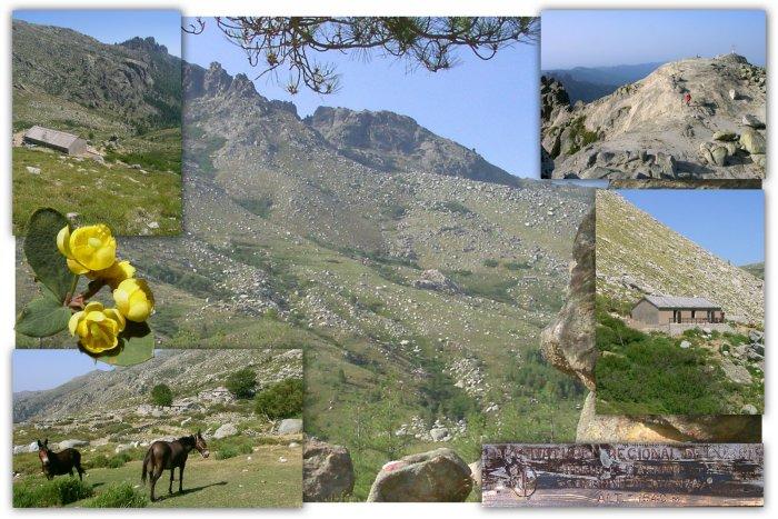 Refuge - Bergerie - d'Asinau et sommet proche : ( Incudine )