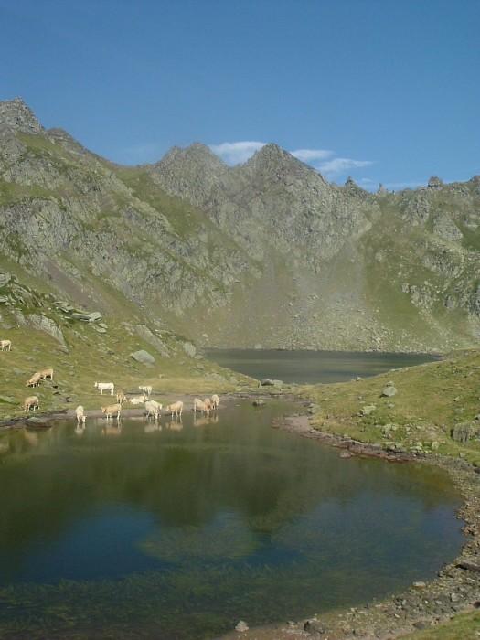 Lac Bersau