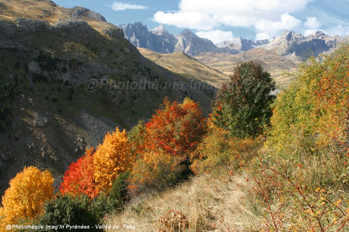 Automne en vallée de Teña