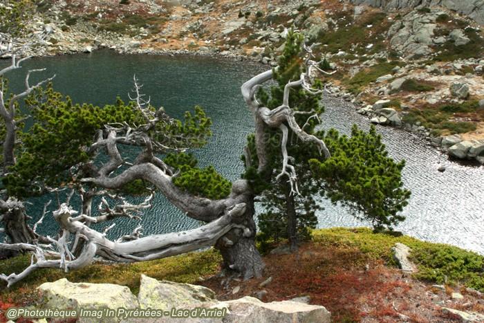 Lac d'Arriel
