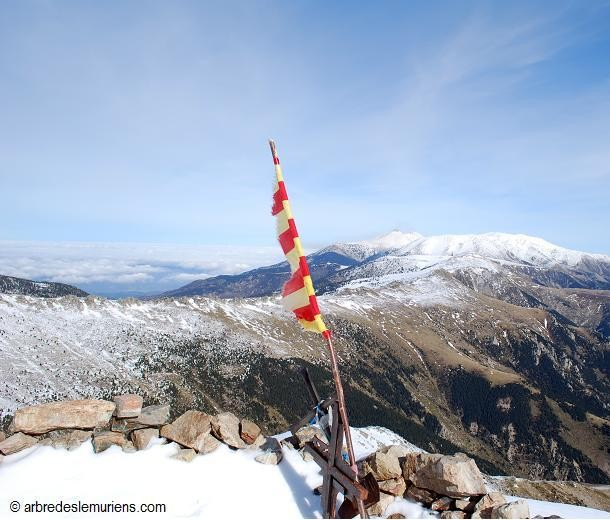Du sommet du Costabonne