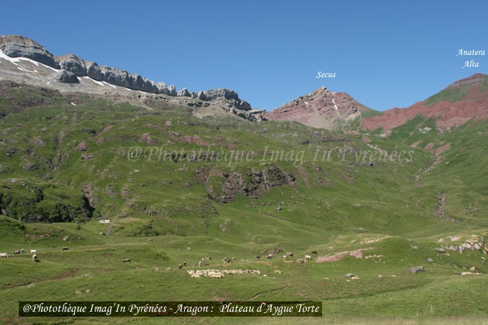 Anatera Alta et Secus
