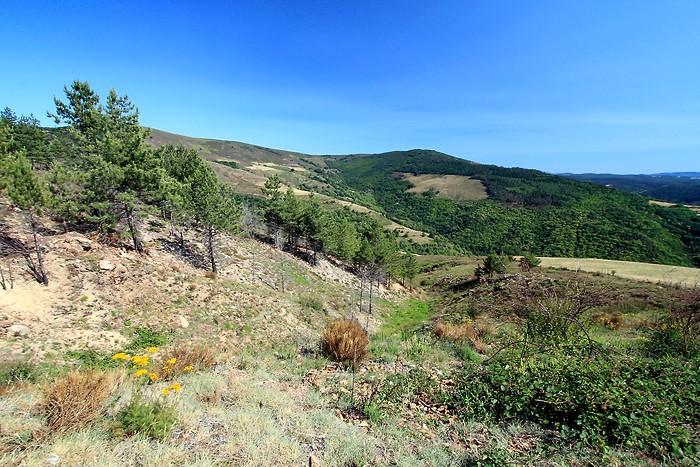 Superbe vue depuis le col du Sapet dans les Cevennes