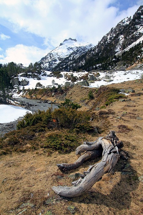 Raquettes à neige dans la vallée du Marcadau