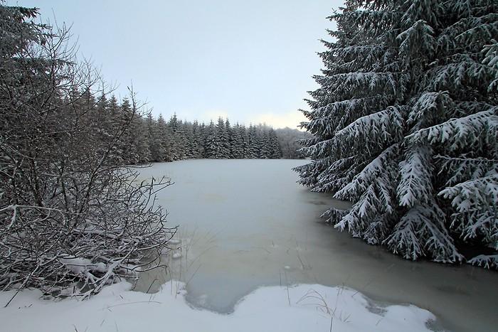 Etendue gelée sur le sentier botanique de Laguiole