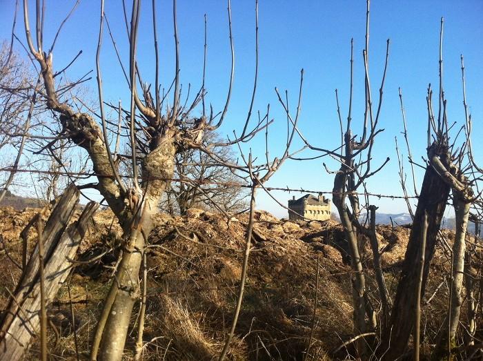Le Plô de Masse au dessus d'Espalion derrière les champs