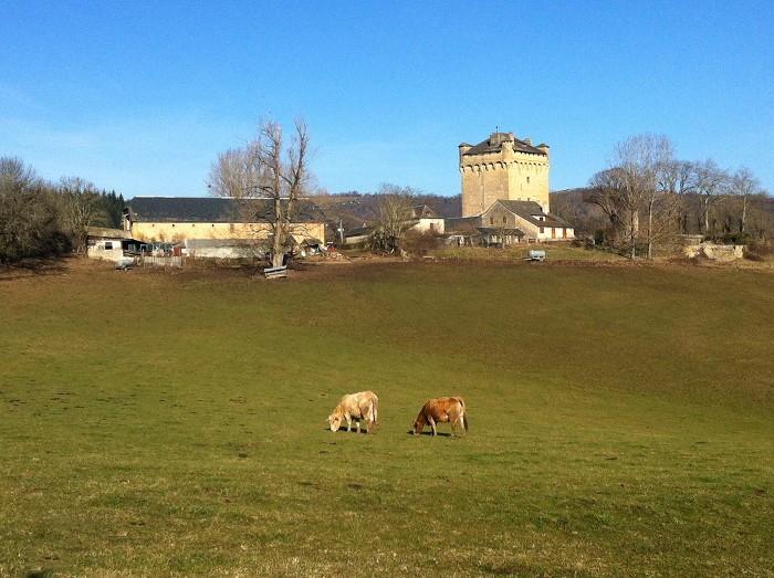 Randonnée pédestre : Randonnée autour de la Tour de Masse en Aveyron