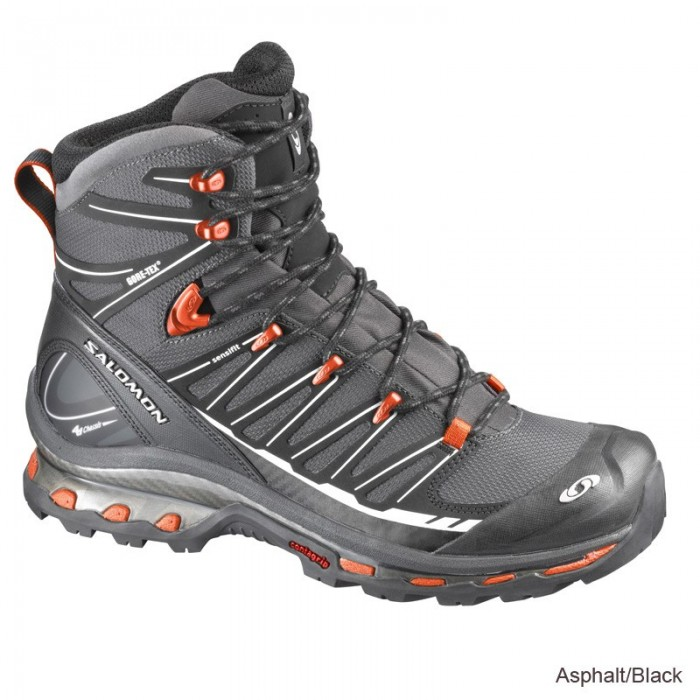 Salomon Cosmic 4D 2 GTX Aspahalt/ Black/Tom
