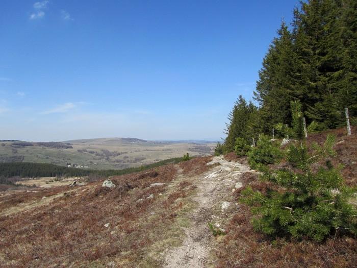 Randonnée au Col de Bonnecombe et alentours sur l'Aubrac côté Lozère