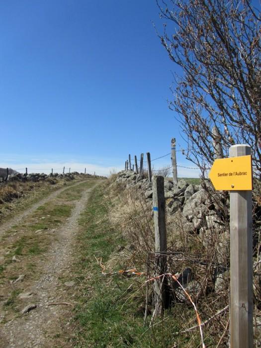 Sentier de l'Aubrac: chemin de randonnée côté Lozère, sur le Plateau de l'Aubrac