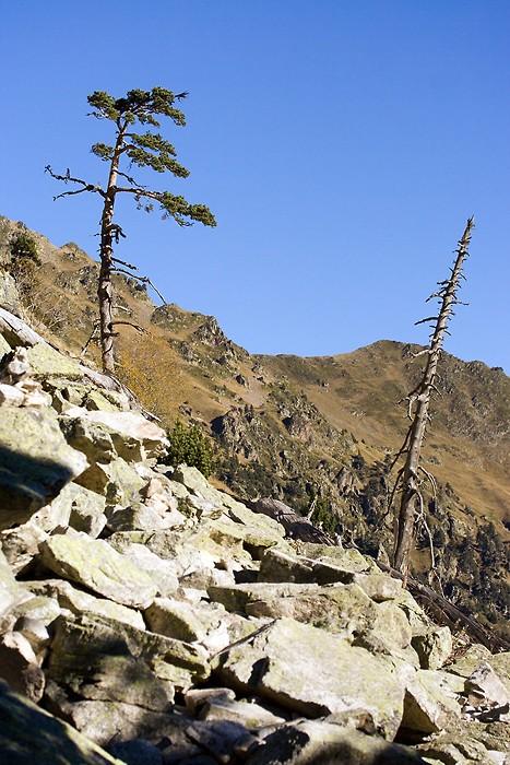 Le sentier monte dans les rochers