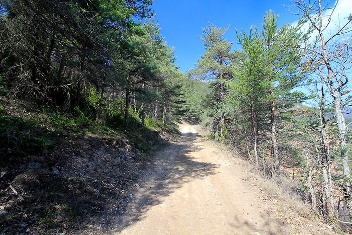 Début de la randonnée vers le piedestal
