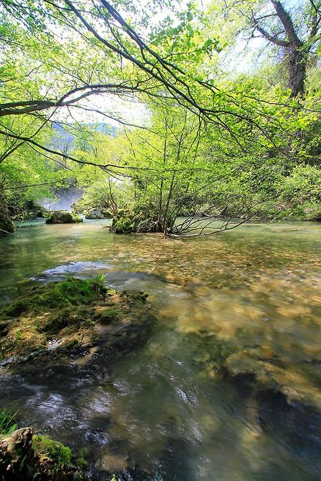 Rivière le la vallée de la Vis
