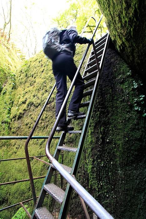 L'échelle pour descendre dans la Grotte du Diable