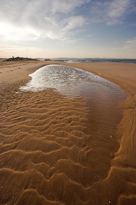 Balade sur la plage à la pointe du Cap Ferret