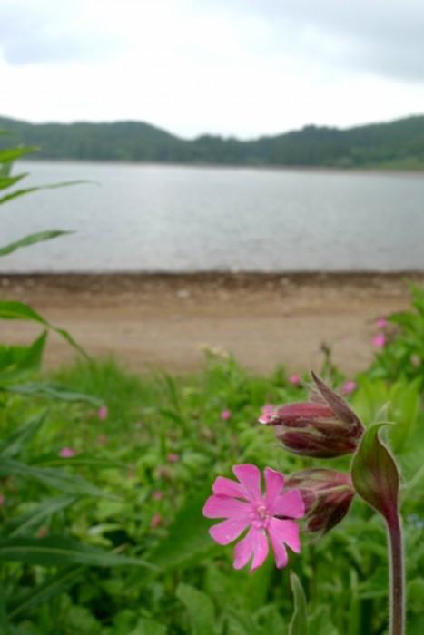 Massif du Mont Dore : le Lac de Guéry