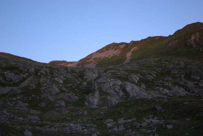 Pic de la Montagnette