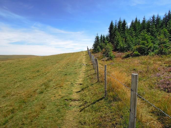 Randonnée sur Aubrac, au Signal de Mailhebiau
