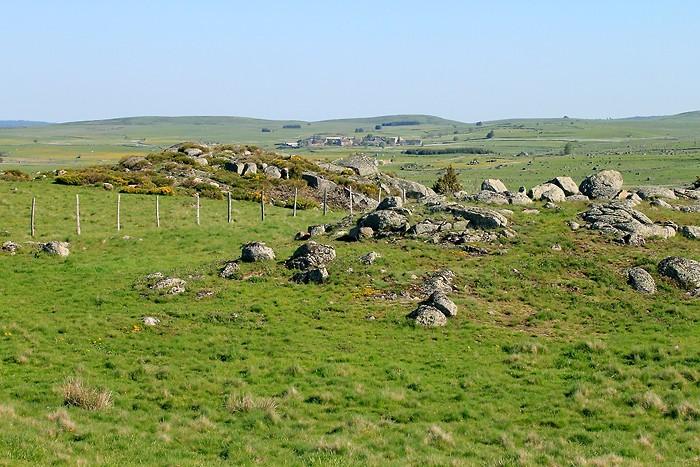 Herbe et rochers sur le plateau de l'Aubrac