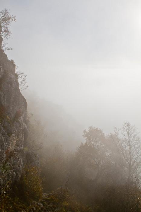 Entre ciel et brume