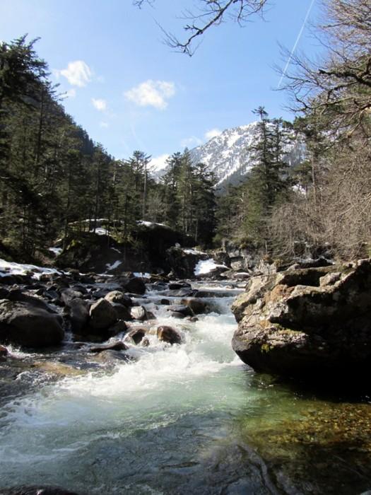 Cours d'eau dans une vallée des Pyrénées, près du Pont d'Espagne, Pyrénées