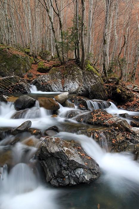 Cascades dans les Pyrénées (forêt du Bué)