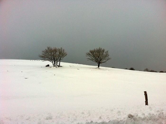 Paysage d'Aubrac enneigé, près de Laguiole