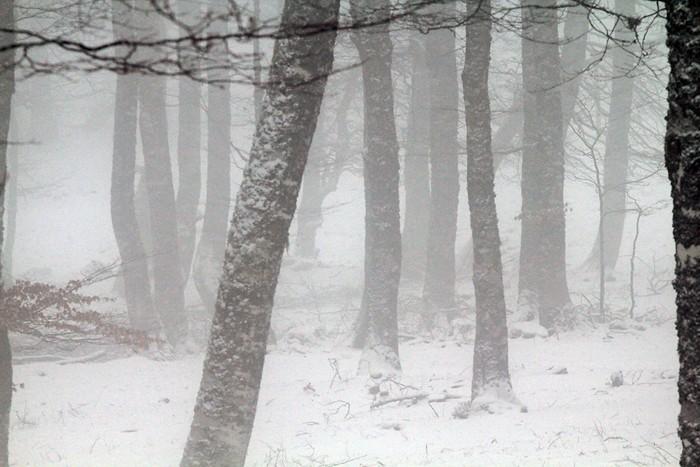 Brouillard fantomatique