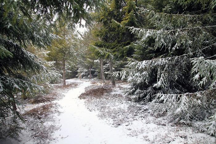 Progression dans la neige en Aveyron
