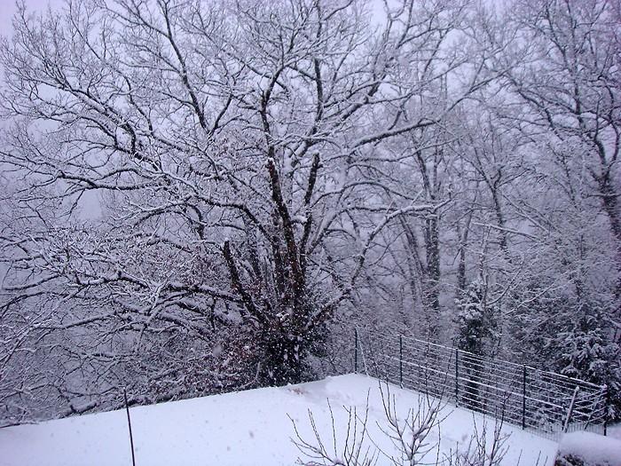 La neige est à nouveau tombée en Aveyron
