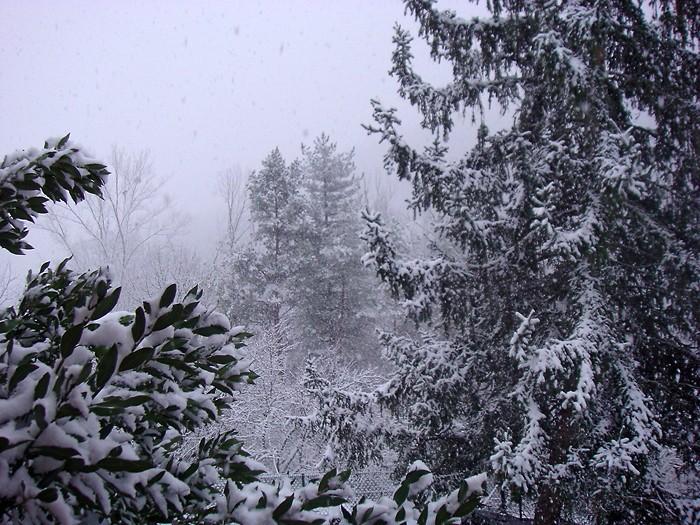 Paysage d'Aveyron sous la neige d'hiver