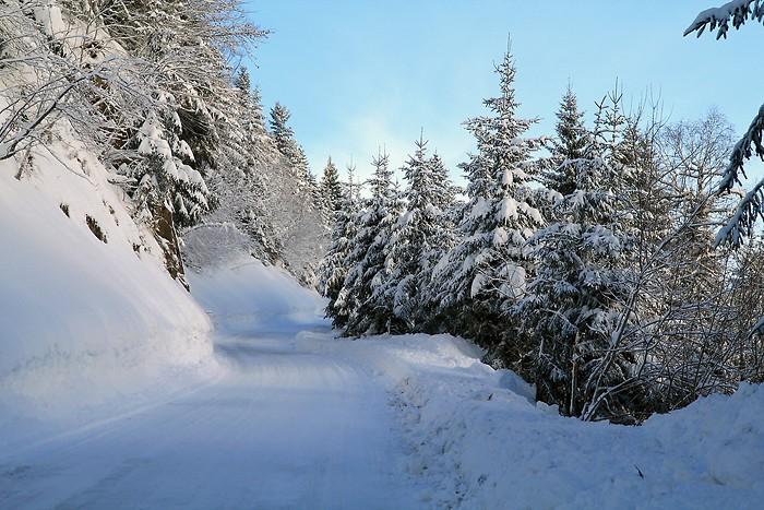 La neige recouvre tout