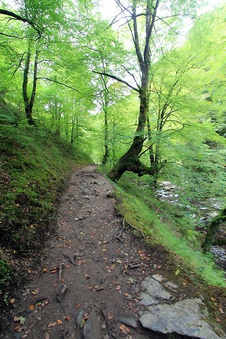 Début de la randonnée vers la passerelle d'Holzarté
