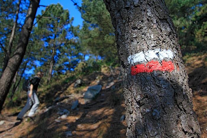 Randonnée sur le sentier de Grande Randonnée GR 34