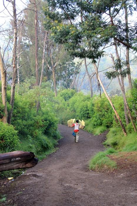Randonnée en Indonésie sur le volcan Kawah Ijen