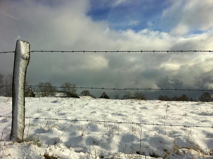 Neige près de Laguiole, Aveyron