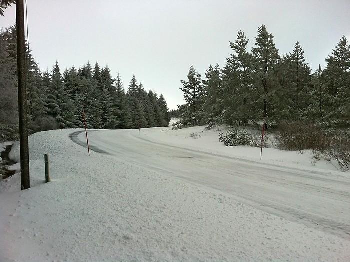Neige sur Aubrac entre Laguiole et St Urcize, Aveyron