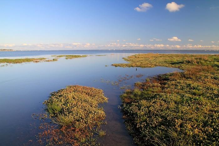 Bassin d'Arcachon au niveau d'Andernos