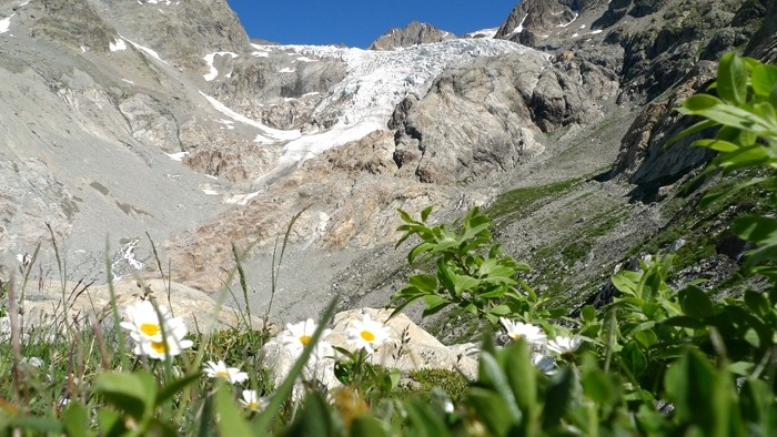Le Glacier Blanc, Massif des Ecrins, au départ du pré de mme Carle