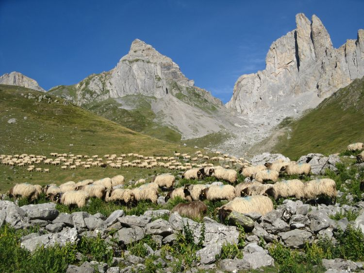 Randonnée pédestre : Traversée des Pyrénées à pied par la HRP en 2013