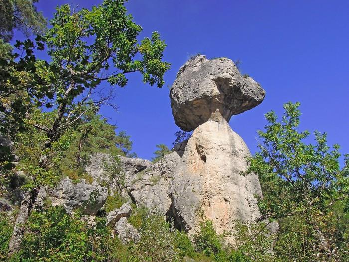 Rocher à tête d'animal, Chaos de Montpellier le Vieux
