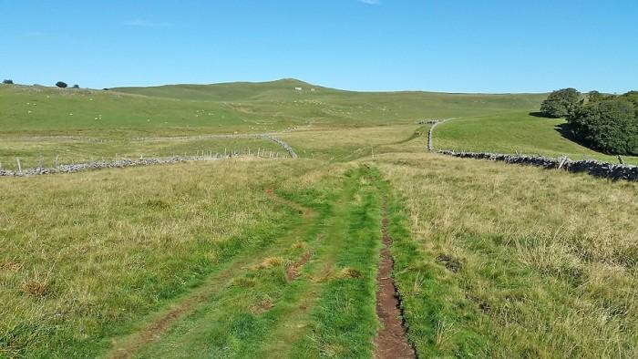Chemin face au Puy de Gudette