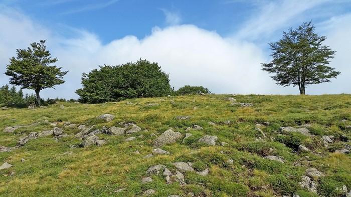 Aux alentours du Puy de Gudette