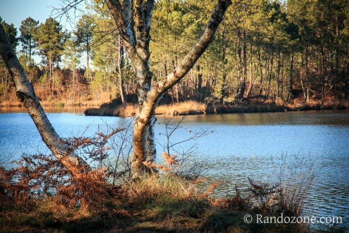 Hostens Balade 1 : Tour du petit lac de Bernadas
