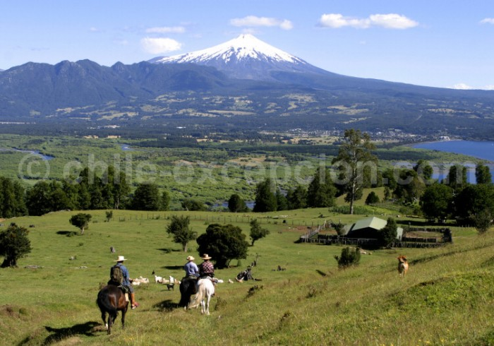 Balade à cheval au Chili